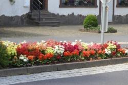 2020.06.29-Blumen-006