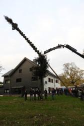Kirmesbaum-2019-013