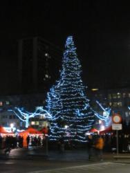 Wilrijk2013-023