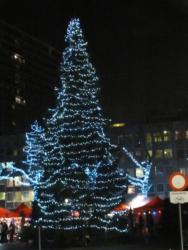 Wilrijk2013-024